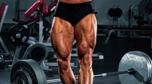 Legs%2010-1